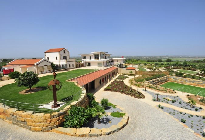 Luxury Estate with Vineyards - Introduction
